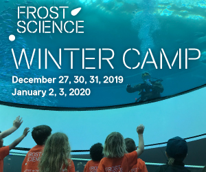 2019-Winter-Camp-300X250-human