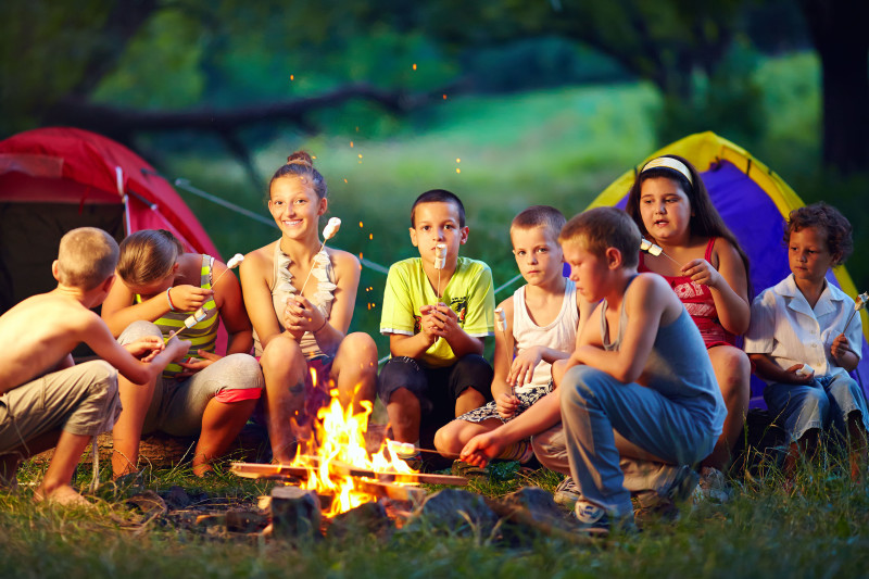 29350699 - group of happy kids roasting marshmallows on campfire
