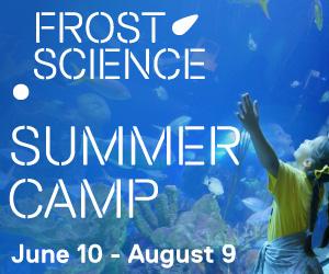 300x250-summer-camp