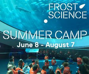 Summer-Camp-300x250-oculus